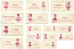 "Melissa Frances C'est La Vie Flash Cards 16/Pkg-1.26"" X 2.5"" & 1.77"" X 3.5"" at Sears.com"