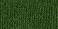 Bazzill-Mono-Cardstock-8-5-034-X11-034-Ivy-Canvas