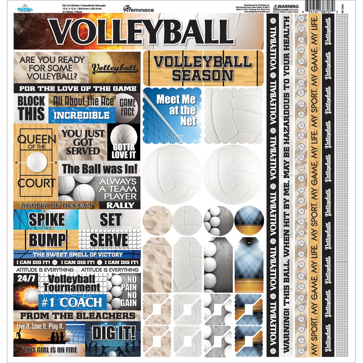 Volleyball Cardstock Sticker 12